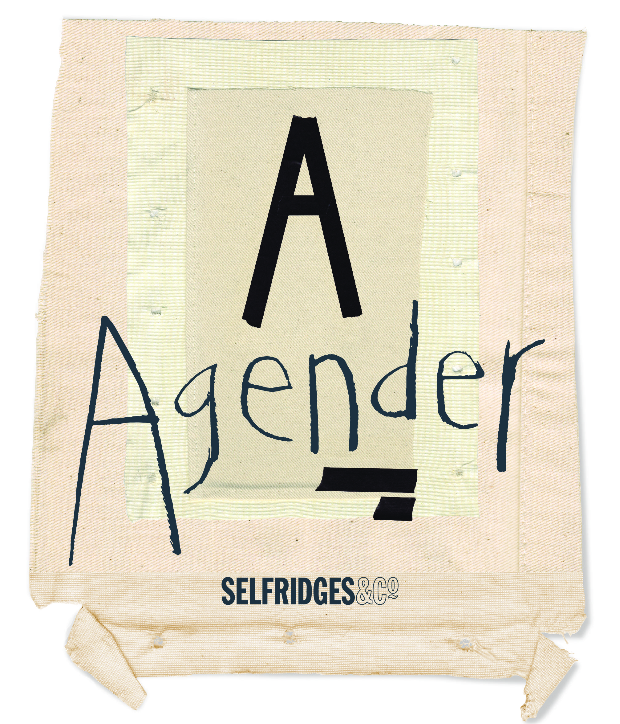 Agender Hero Logo_with canvas