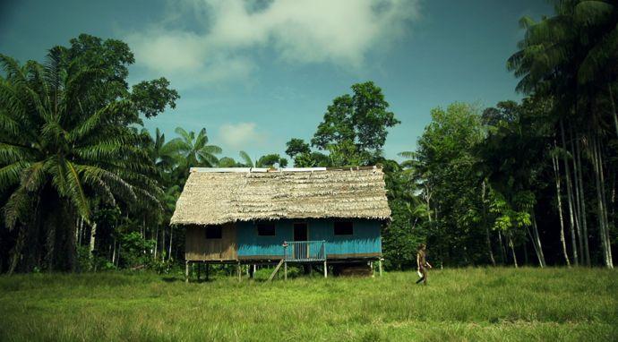 Amazonian paradise