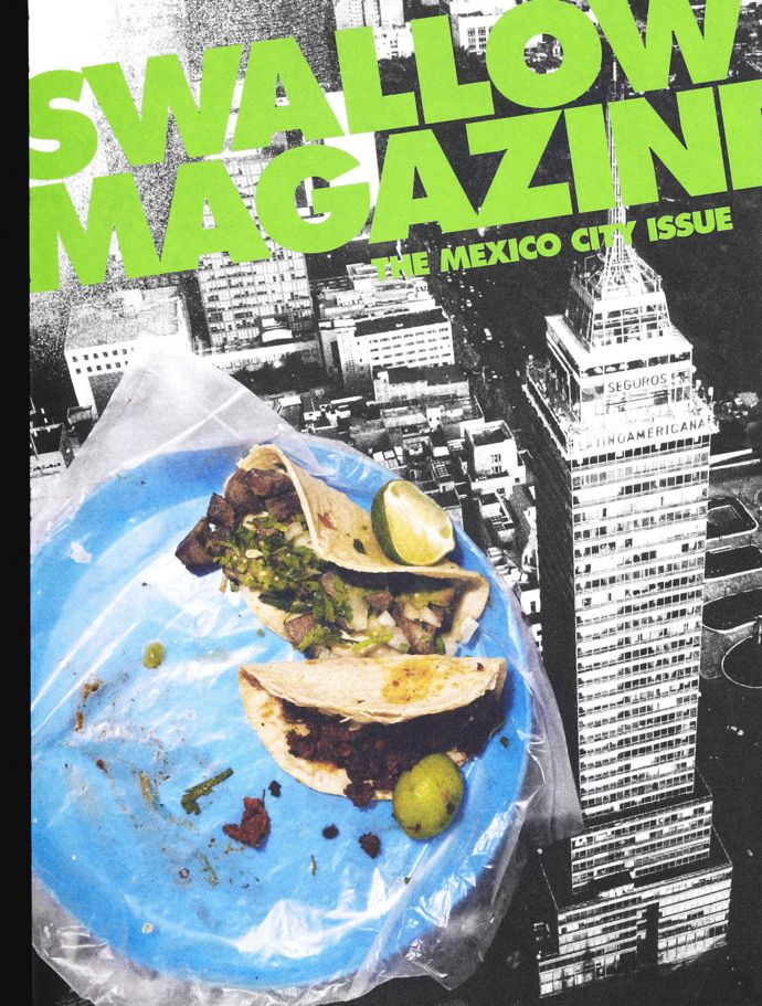 Swallow-Mexico-cover