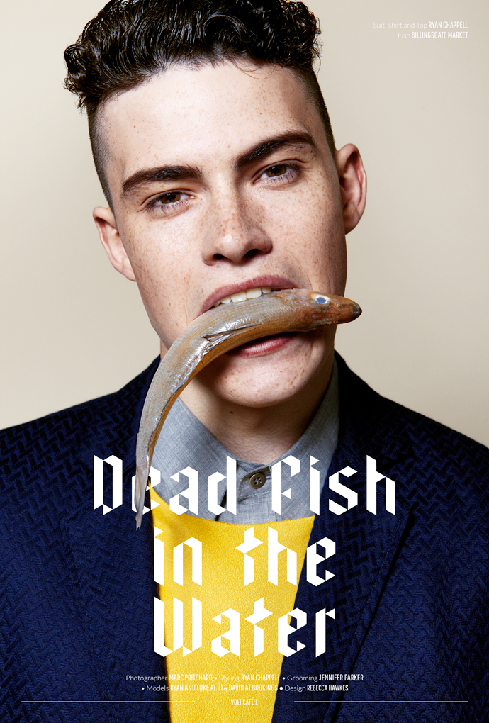 Dead-Fish-in-the-Water-Layout